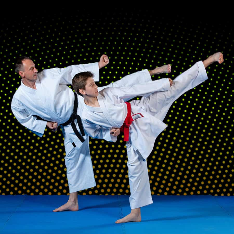 Martial Arts Lessons for Families in _Williamsburg_ _VA_ - Dad and Son High Kick