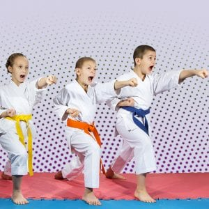 Martial Arts Lessons for Kids in _Williamsburg_ _VA_ - Punching Focus Kids Sync